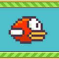 Pixel Bird